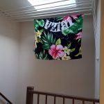 trapgat plafonddroogrek
